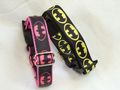 Funky Nylon Dog Collars